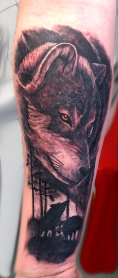 wilk_wolf2